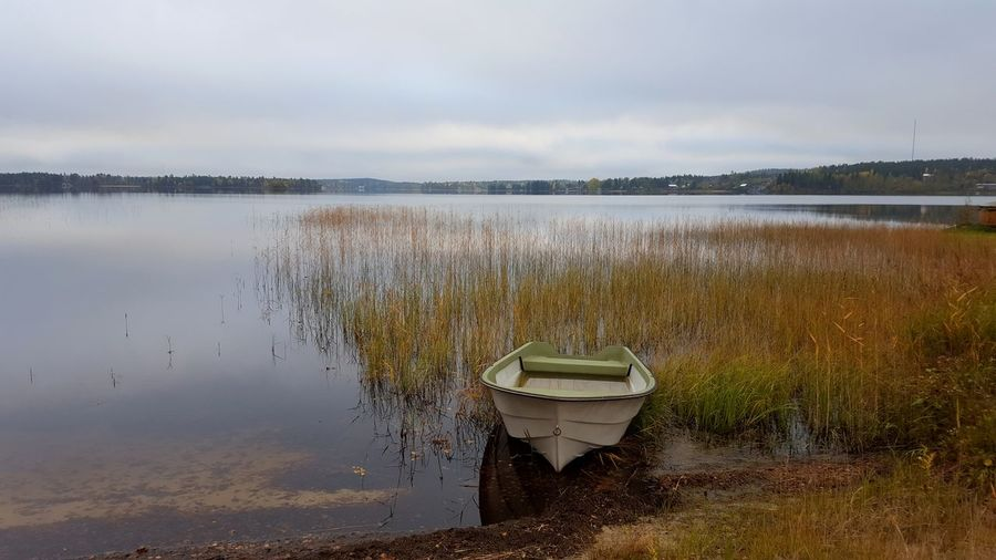 Boats Boats And