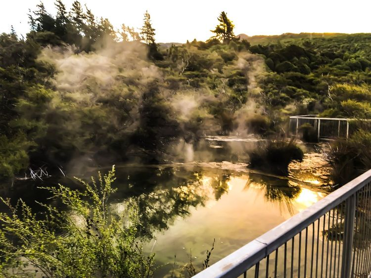 Tokaanu Hot Springs, New Zealand New Zealand Beauty New Zealand Healing Water Rejuvenate Relax Hot Springs Sunsets Tokaanu Railing Water Tree Motion Nature No People Scenics Outdoors Beauty In Nature Mountain
