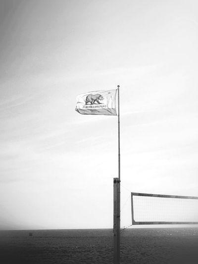 Surf's Up Beach