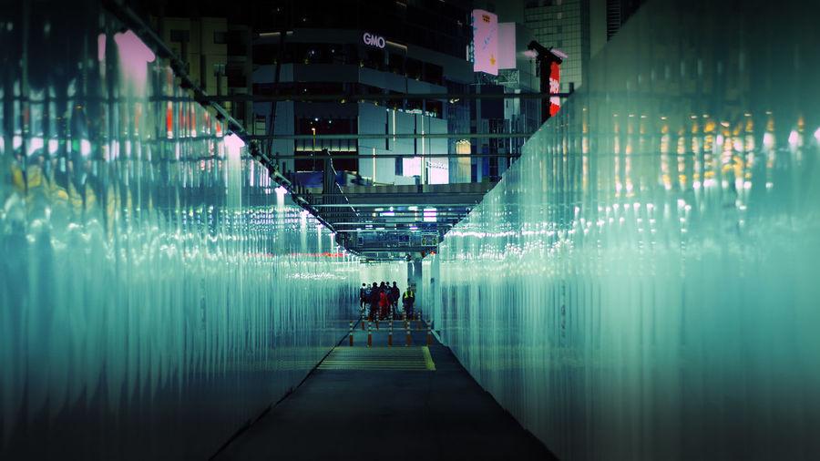 People in illuminated tunnel at night