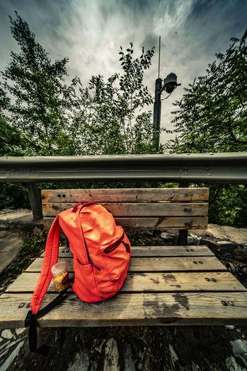 一个红包鼓鼓囊囊,是谁把它留在道旁,要趁没人把它捡走,旁边监控多半照上。 packpack Tree Wood - Material Bench Seat Outdoors No People Red Bag Backpack