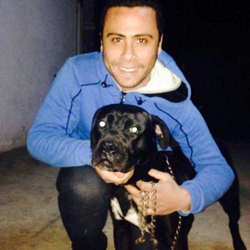 Black My Dog Dog Canicorso Taking Photos