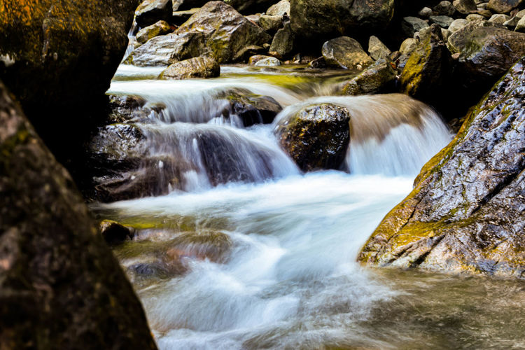 Clam water stream