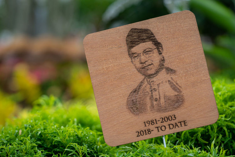 Tun Dr. Mahathir bin Mohamad is a Malaysian politician currently serving as the Prime Minister of Malaysia for the second time. Laser print on wood. Tun Mahathir Close-up Communication Day Field Focus On Foreground Grass Green Color Human Representation Independence Day Information Malaysia Message Nature No People Non-western Script Number Outdoors Plant Prime Minister Representation Sign Text Western Script Wood - Material