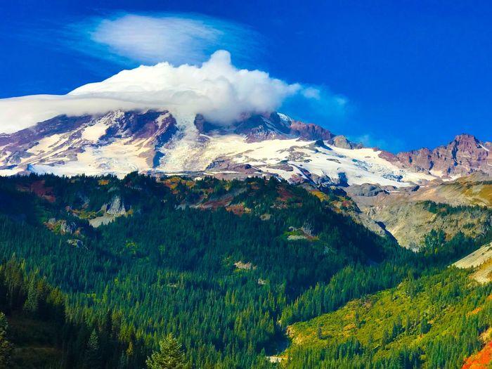 Mount Rainier in the fall. Washington State Mountain Nature Scenics Beauty In Nature Mountain Range Landscape Tranquil Scene Wilderness Area