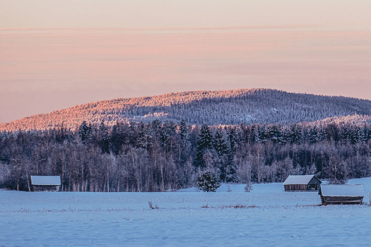 Scenic view of snow covered field against sky at sunset