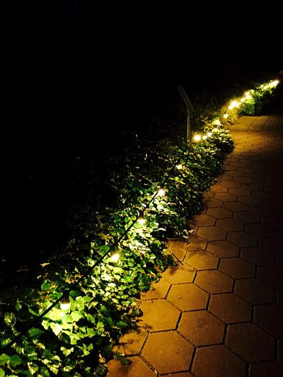 Light And Shadow Light Outdoors Outdoor Photography Nature Nature_collection Photography Streetphotography EyeEm Best Shots Evening Light Evening Night Nightphotography Nature Photography EE Love Connection! Eye4photography  Illuminated EyeEmBestPics Friends Night Out \m/
