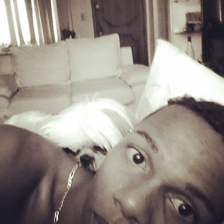 Chui Dog Cute Crazydog Frienddog dream instadog instaboy @__divulgrams @colirios_divulgaaa @indicandotops2013 @divulgando_01 @divulganet @eusou_top
