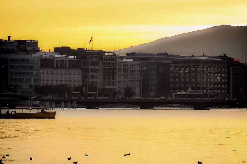 La citée d or de Genève Sunset aArchitecturebBuilt StructurebBuilding ExteriorwWateroOutdoorssSkynNatureyYellownNo PeoplecCitysSeadDaybBirdaAmazinglLikelLike4likeBBeautifulhHorizon Over Water