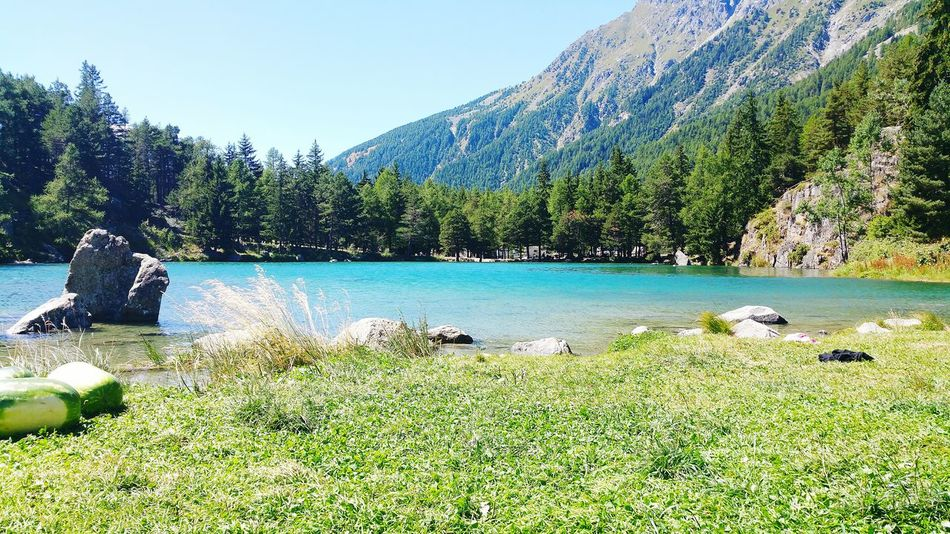 Mountain Tranquil Scene Tranquility Nature Green Color Blue Tourism Nature Aosta Aosta Valley Italy Lake Lake Bluelake Cartoline