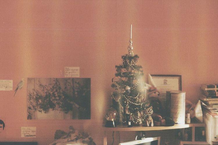 i wish it were christmas Christmas Trees Home Taking Photos