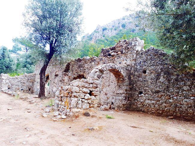 olimpos Harabeleri Olimpos, Kemer Olimpos Karpathos Historical Site Tree Backgrounds Close-up Sky