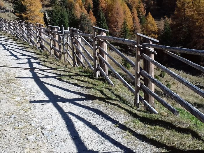 Parallelwelten Parallel Universe Parallel Lines Alpenwelt Zaun Fence Schattenspiel  Schatten Holzzaun Wooden Fence Bergwanderung Bergwelten Bergwandern Bergwanderweg Mountains Sunlight Shadow Railing Day No People Tree Outdoors