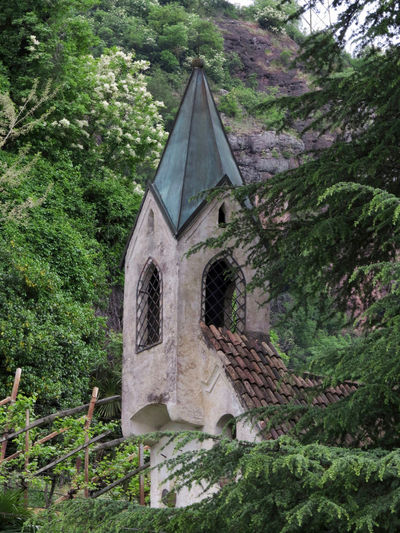 Architecture Church Architecture Bell Tower Building Building Exterior Built Structure Bulging Day Foliage Forest Green Color Growth Low Angle View Lush Foliage Nature No People Outdoors Place Of Worship Plant Tree