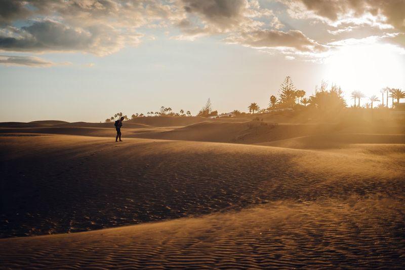 Odissey desert