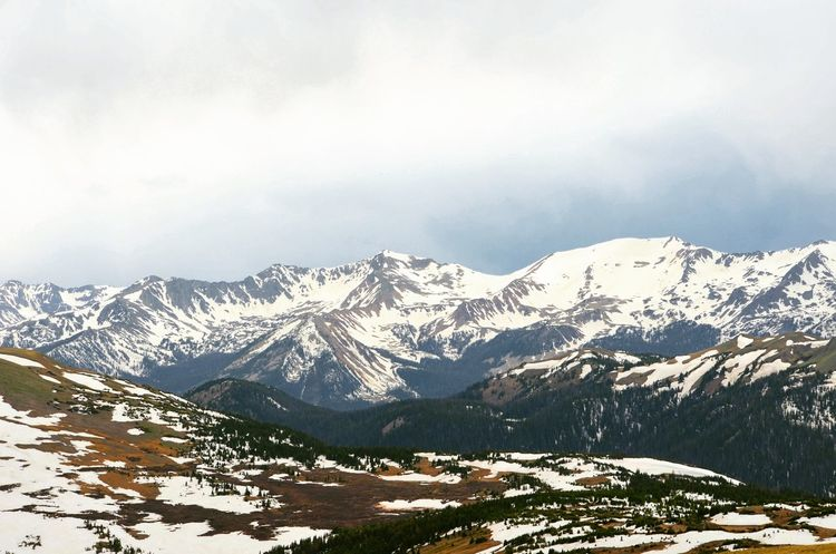 Mountains everywhere! Tundra Beauty In Nature Trees And Sky Tranquility New Perspectives ExploreEverything Mountain Snow Cold Temperature Winter Snowcapped Mountain Pinaceae Wilderness Pine Tree Mountain Peak Sky Spruce Tree Physical Geography Rocky Mountains Rock Formation Majestic Valley Dramatic Landscape
