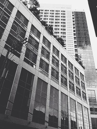 Hotel Cebu Cebu,Philippine