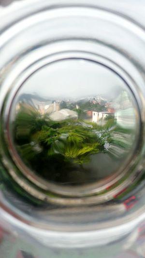Close-up of tea in glass jar