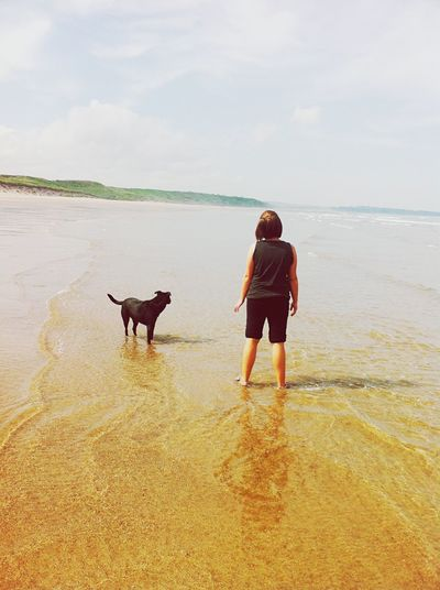 Rear View Full Length Of Woman Standing With Dog At Beach Against Sky
