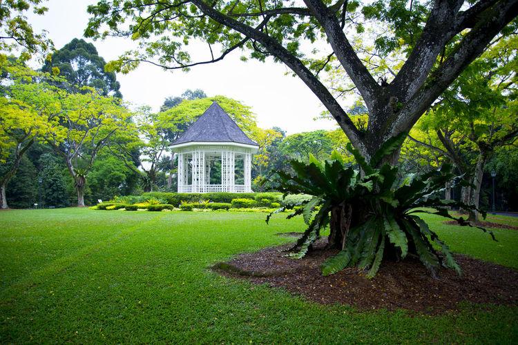 The Band Stand Singapore Band Stand Singapore Botanic Garden Botanic Garden