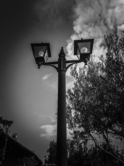 so I turn the lights off... and wish goodnight... sleep tight... and sweet dreams to everyone of you my dear freinds. Street lamp lampione in colle alta lampione eye for photography phonePhotography EyeEm Phone photography nightwalk Nightphotography cloud - sky clouds and sky EyeEm Best Shots EyeEm gallery EyeEm Selects blackandwhite photography Street Lamp Lampione In Colle Alta Lampione Eye For Photography PhonePhotography EyeEm Phone Photography Nightwalk Nightphotography Cloud - Sky Clouds And Sky EyeEm Best Shots EyeEm Gallery EyeEm Selects Blackandwhite Photography Black & White EyeEm Black&white! Olive Tree Shadows & Lights Shades Trees And Sky Low Angle View Outdoors Sky Stoplight Night Illuminated Road Sign No People