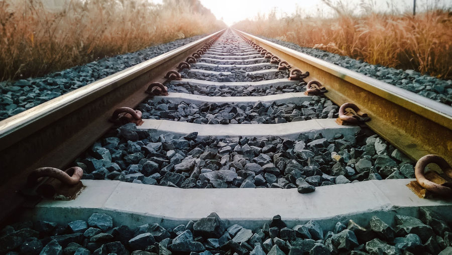 Rail way with yellow die gras on wayside,Film grain vintage style Alone FAR AWAY Feel The Journey Grass Day Diminishing Perspective Lonlyness Metal Nature No People Outdoors Rail Transportation Railroad Tie Railroad Track Railway The Way Forward Train Transportation