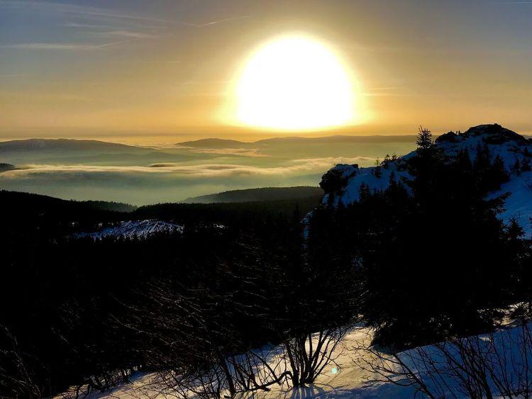 Sunset on Arber Bayerischer Wald Winter Sky Sunset Beauty In Nature Scenics - Nature Tree Tranquil Scene Tranquility Sun Idyllic Nature
