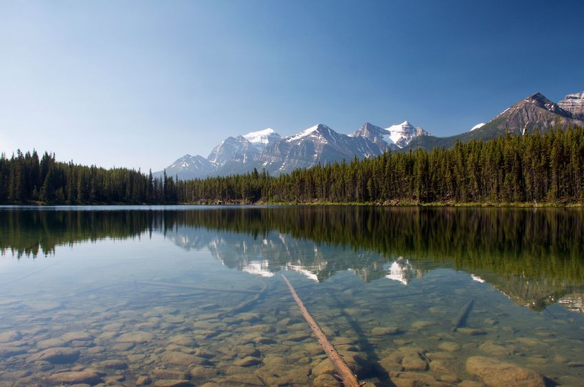 Adventures Banff National Park  Canadian Rockies  Hiking Reflection Of Trees And Mountains On Water Crystal Clear Waters Glacial Lake Lake Reflection Landscape Mountain Range Paradise Peaceful Reflection In The Water Tourism Travel Destinations My Best Travel Photo
