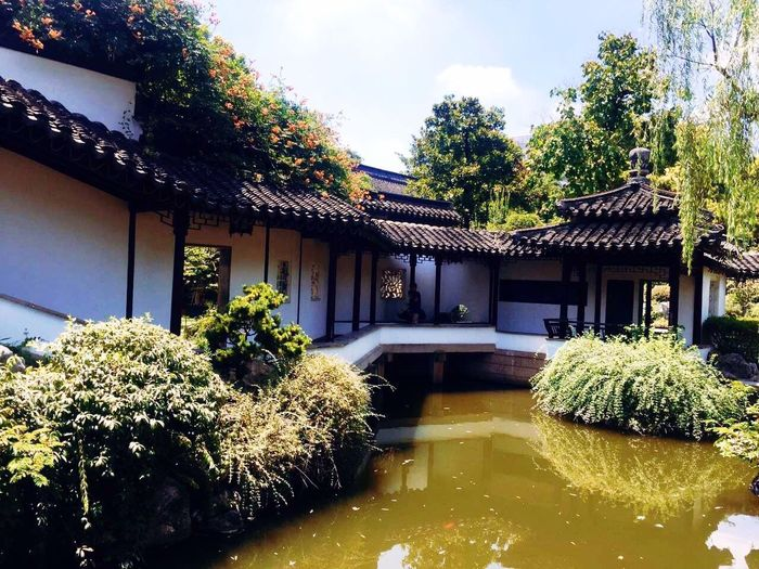 Nanking Architecture Building Exterior Built Structure Plant Tree House Outdoors Day No People Nature Growth Flower Beauty In Nature Water Sky