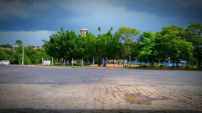 Hello World Taking Photos Hanging Out Check This Out Simple Photography Simple Moment Tree And Sky Trees The Rain Is Coming