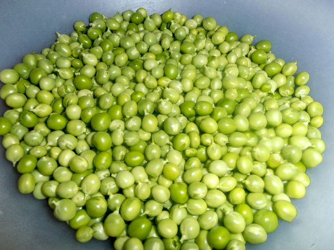 Close-up Food Food And Drink Fresh Freshness Freshness Green Color Green Peas Harvest Healthy Healthy Eating Healthy Food Healthy Lifestyle Homegrown Many Numerous Organic Vegan Vegetable