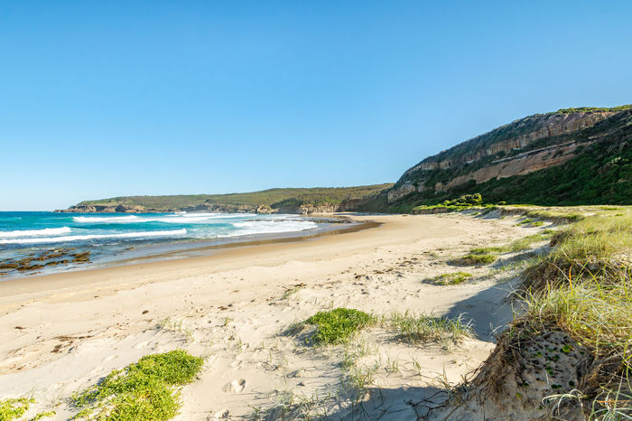 An untouched beach in Australia on a perfect sunny day Water Sea Beach Land Sky Scenics - Nature Clear Sky Beauty In Nature Nature Blue Tranquility No People Tranquil Scene Day Copy Space Sand Travel Motion Wave Outdoors