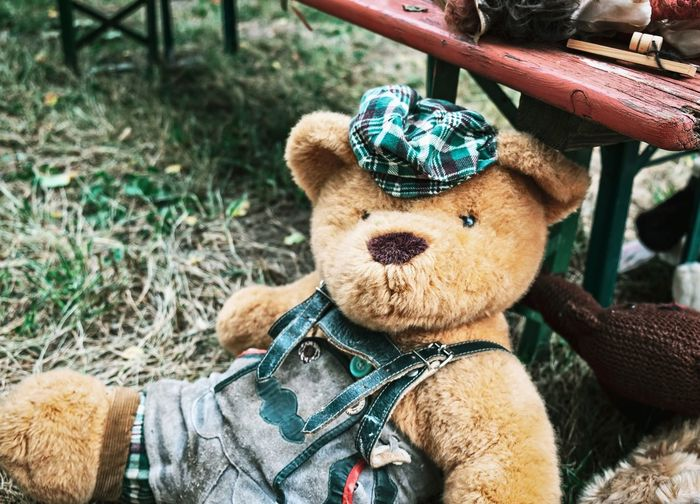 Portrait of teddy bear...