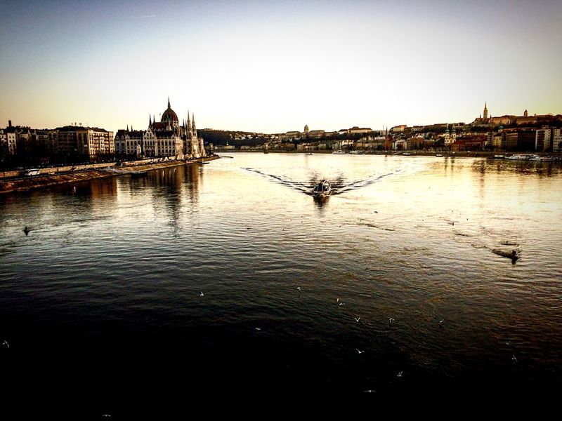 Lights Budapest Shadows & Lights Cityscapes 43 Golden Moments Budapest, Hungary River Riverscape Boat EyeEm On The Way Water Water Reflections Water_collection Parlamento Húngaro Budapest Parliament Birds Goldwater