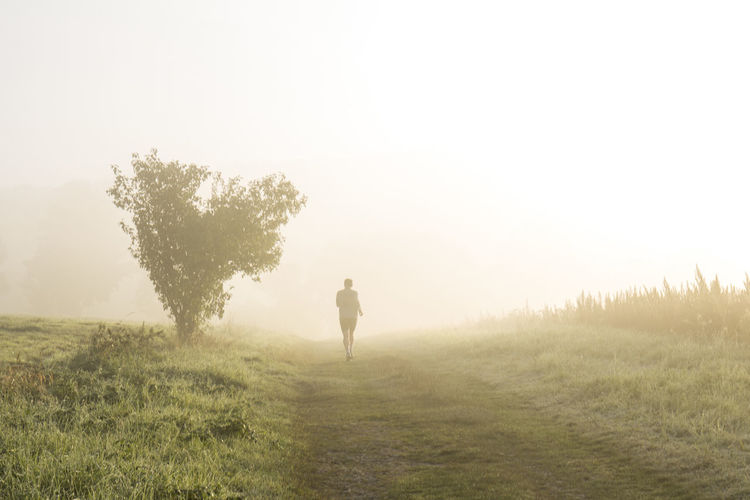 Adventure Beauty In Nature Healthy Lifestyle Jogging Jogging Track Landscape Morning Morning Life Nature Outdoors Running Running Time Sport Walking EyeEmNewHere Fresh on Market 2017 Investing In Quality Of Life Breathing Space Lost In The Landscape