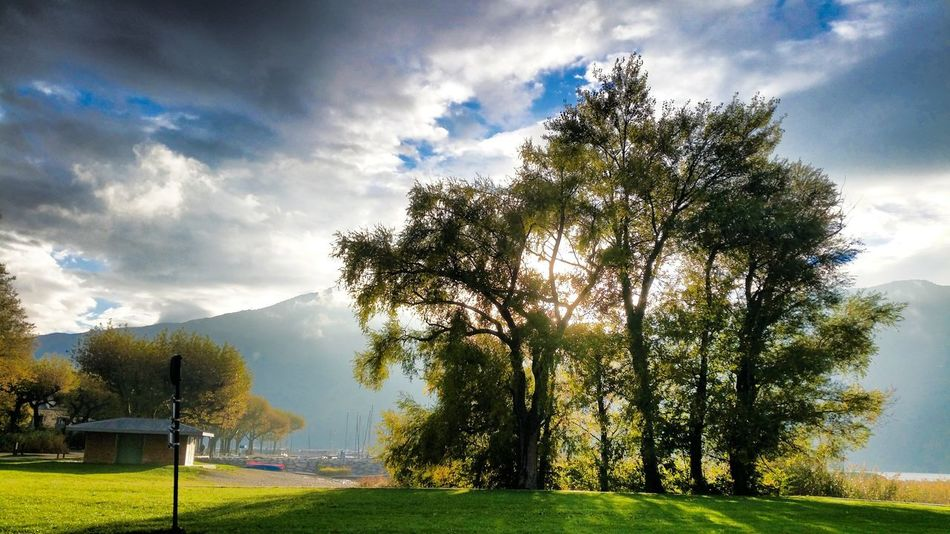 Tree Grass Landscape Sky Beauty In Nature Nature Cloud - Sky Tree Trunk Non-urban Scene Francetourisme EyeEm Best Shots Beauty In Nature First Eyeem Photo Art Photography Green Taking Photos EyeEm Paradise Tree Transportation Blue Life Love Multi Colored Remote