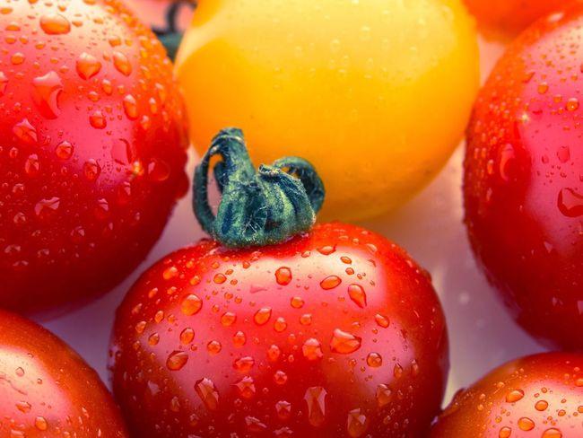Nature Stillife Tomato EyeEm Nature Lover トマト Tomatoes