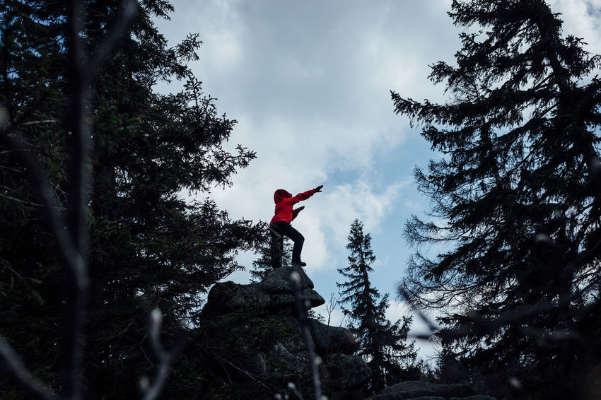 Hiker on mountain Red Beauty In Nature Climbing Cloud - Sky Day Forest Full Length Harz Harzmountains Hiker Human Arm Land Leisure Activity Lifestyles Limb Low Angle View Nature One Person Plant Real People Red Sky Standing Tree