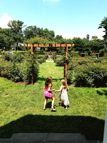 Childhood Girls Children Only Two People Day Outdoors Tree Sky Child Grass People Togetherness Pathway To My Secret Garden Walk Of Life Sunlight Rose Gardens Wonder Sisters Freshness Summer Time  Beauty In Nature Flora Bushes Flower Colorful