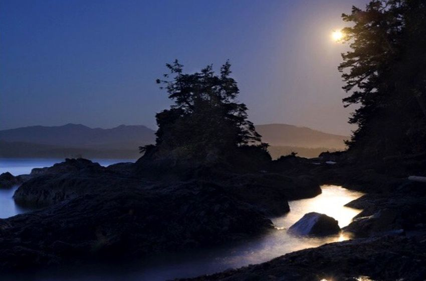 The Moon Lights up Sanford Island off the WestCoast of Vancouver Island . Landscape Landscape_photography