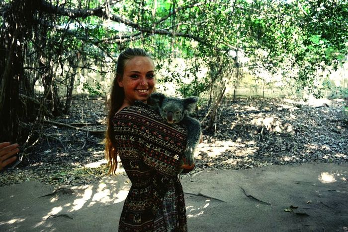 I've loved holding this cutie! Koala Bear Soft Beauty Cuddlebuddy Loveit Never Let Go Smile Happy Girl  Good Memories Never Forget Never Stop Dreaming