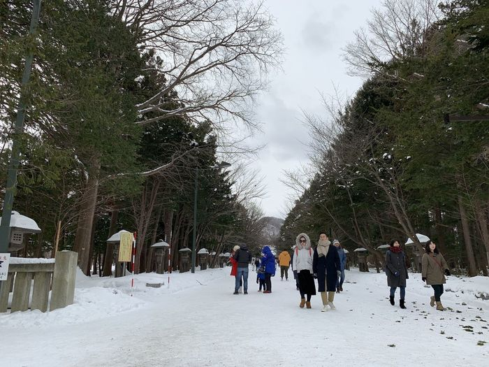People walking on snow covered trees against sky