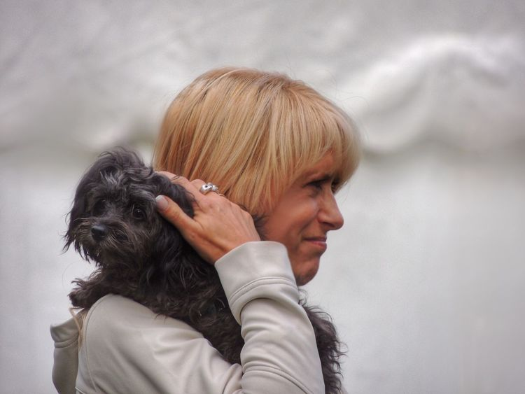 My best friend // Mein bester Freund My Bestfriend Dog Dog Love Dogs Dogs Of EyeEm Dog Lover Bolonka EyeEm Gallery Eyeemphotography Relaxing Taking Photos EyeEm Best Shots Germany Pet Photography  Animals