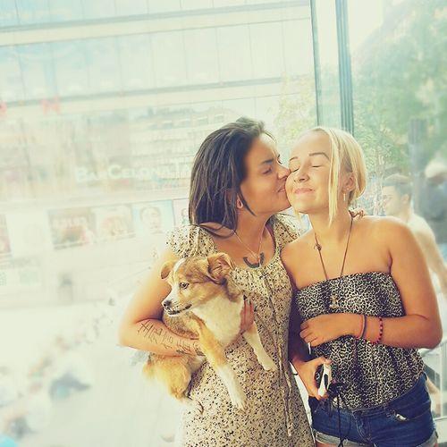 Sisters Sisters ❤ Stockholm Dog