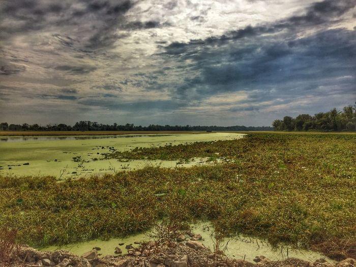 Marsh lands Illinois No People Lake