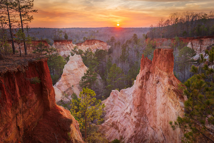 """Sunset in South Georgia at Providence Canyon. The canyon formation, made up of a kaleidoscope of coloured sands and clays, owes its existence to destructive early farming practices in the 19th century as is was unknown at the time that the undulating hills were made up of deep sand deposits below a very thin crust of clayey topsoil. Once the topsoil had been disturbed the natural elements did the rest with the canyon progressively deepening over the subsequent 150 years. The dramatic pinnacles which remain are sections of clay which the sand has eroded around. The erosion gullies reach depths of 150 feet (or 46m) and are referred to by the locals as Georgia's """"Little Grand Canyon"""". Providence Canyon State Park, Georgia, United States of America. Love Life, Love Photography America Canyon Clay Colour Coloured Day Forest Georgia Grand Landscape Nature Outdoors Park Pinnacles Providence Rock Formation Sands Southern State Taking Photos Tranquil Scene Tree Tree United States USA The Great Outdoors"""