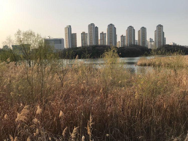 Lake. South Korea Building Exterior Architecture Built Structure Sky Building Nature City