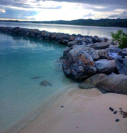 Beach Dawn Dusk