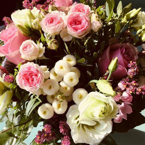 Celebration Birthday Flower Flowering Plant Plant Beauty In Nature Freshness Pink Color Petal Flower Head Inflorescence Flower Arrangement Rose - Flower Vulnerability  Close-up