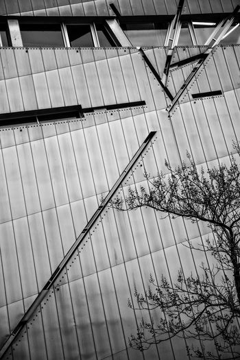 Berlin Berlin Museum Graphism Libeskind